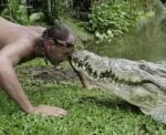 American Crocodile in Costa Rica
