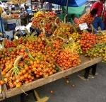 Peach Palm Fruit or Pejibayes